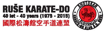 SKI – SDRuše Logo